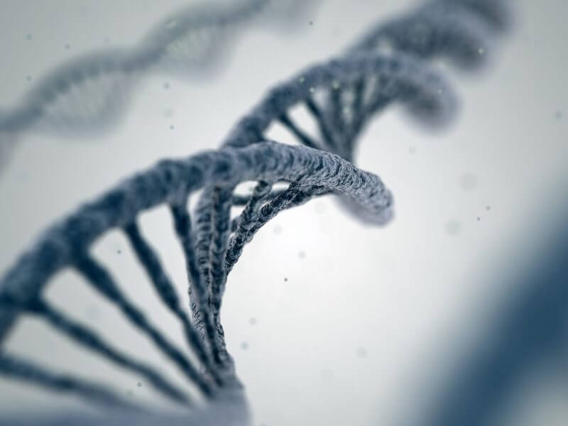 Mastermind Genomic Search Engine Now Supports Genomic Coordinates and cDNA Search