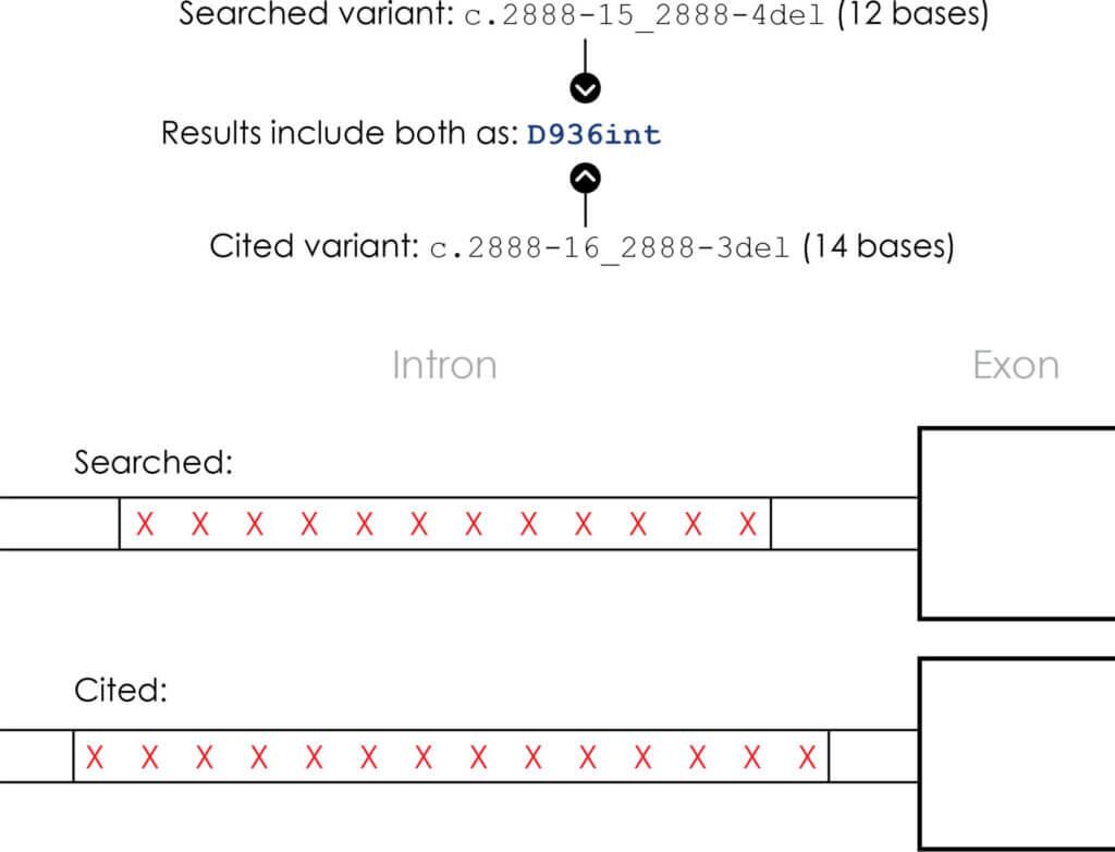 Mastermind Non-Coding Variant Diagram 3