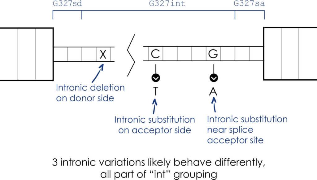 Mastermind Non-Coding Variant Diagram 4