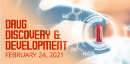 DDD 2021 event small